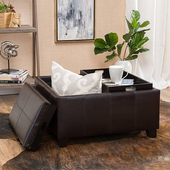 Buy Justin 2-Tray-Top Brown Leather Ottoman Coffee Table w/ Storage