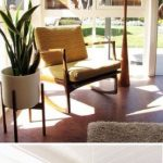 23 Best Mid Century Modern Plants - decorisme