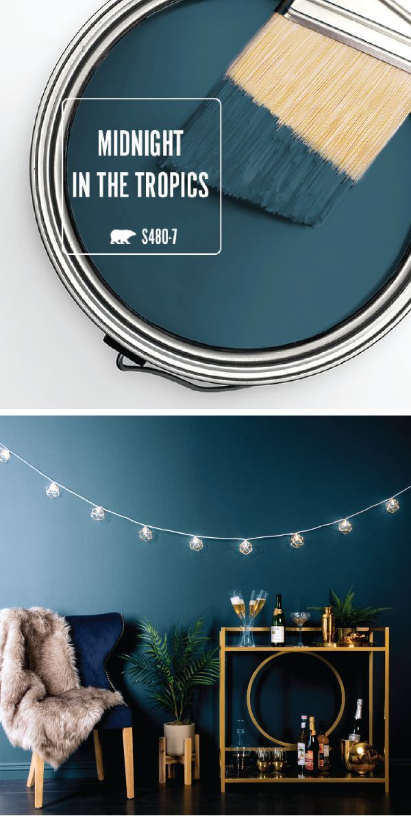 New Year's Inspiration: Midnight in the Tropics – Colorfully, BEHR